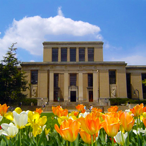 Pattee Library in the spring.